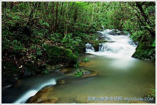 武夷山玉龙谷景区美景