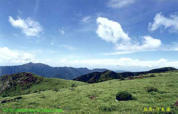 武夷山被称为蛇的王国所以跟蛇有关的制品也是很丰富的。 小秘诀 1、如果选择夏天(7、8月)来武夷山一定要涂摸防晒霜(高倍的),护肤品 SPF30以上防水性好的防晒露;晒后镇定修护露;保湿喷雾反复涂摸,尤其是安排漂流的时候特别需要; 2、一定要带:太阳镜、防紫外线太阳伞。还有照相机或DV,记的带上充足的电池,每天冲好电,否则你会很后悔的;美丽的景色你不能记录下来了哦。 3、夏天的话拖鞋最好都带上,碰到下午漂流的话会觉的特别的好用。替换衣裤 (多备几套,衣物要带吸汗的、透气、快干的衣服当地不容易干)武夷山的